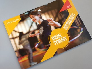 <Strong>Paragon</Strong></br>Social Synergy Report
